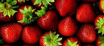 Fragole: un dolcissimo frutto di facile coltivazione